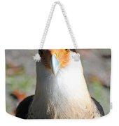Homosassa Springs Waterfowl 21 Weekender Tote Bag