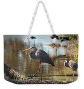Homosassa Springs Waterfowl 8 Weekender Tote Bag