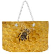 Honey Bee Colony On Honeycomb Weekender Tote Bag