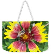 Honey Bee On A Indian Blanket Weekender Tote Bag