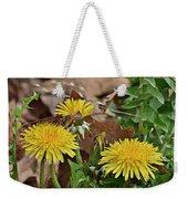 Honey Bee Glee Weekender Tote Bag