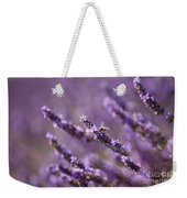 Honey Bee In Lavender Weekender Tote Bag