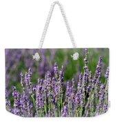 Honeybees On Lavender Flowers Weekender Tote Bag