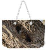 Hooded Merganser In The Knot Hole  Weekender Tote Bag