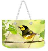 Hooded Warbler - Img_9274-009 Weekender Tote Bag