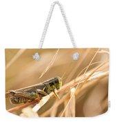 Hopper In Golden Grass Weekender Tote Bag