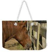 Horse 31 Weekender Tote Bag