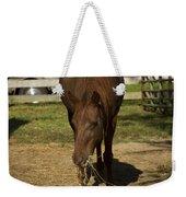 Horse 32 Weekender Tote Bag