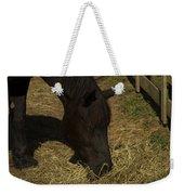 Horse 34 Weekender Tote Bag