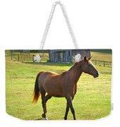 Horse And Old Barn In Etowah Weekender Tote Bag
