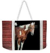 Horse - Barn Door Weekender Tote Bag