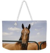 Horse Beauty Weekender Tote Bag