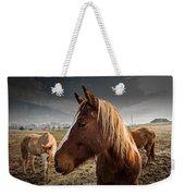 Horse Composition Weekender Tote Bag