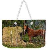 Horse Eating Hay In Eastern Texas Weekender Tote Bag