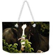 Horse Fence Weekender Tote Bag