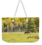 Horse Grazing In Field Autumn Maine Weekender Tote Bag