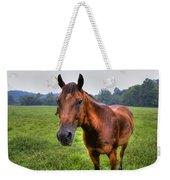 Horse In A Field Weekender Tote Bag