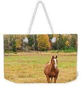 Horse In Field-fall Weekender Tote Bag