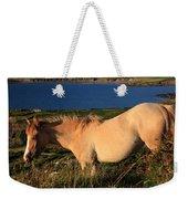 Horse In Wildflower Landscape Weekender Tote Bag