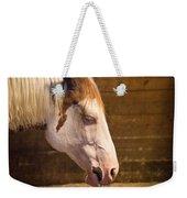 Horse Nap Weekender Tote Bag