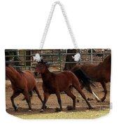 Horse Play Painting  Weekender Tote Bag