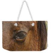 Horse Tear Weekender Tote Bag