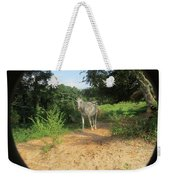 Horse Walks Toward Camera Weekender Tote Bag
