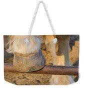 Horses 4 Weekender Tote Bag