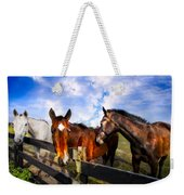 Horses At The Fence Weekender Tote Bag