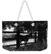 Horses By The Fence Weekender Tote Bag