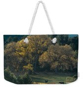 Horses In A Backlit Field With Fall Colored Trees Sedo Weekender Tote Bag
