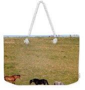 Horses Of Hayward Weekender Tote Bag