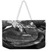 Horseshoe Bend - Arizona Weekender Tote Bag
