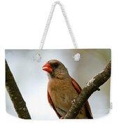 Hot Cardinal Weekender Tote Bag