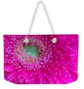 Hot Pink Gerbera Daisy Weekender Tote Bag