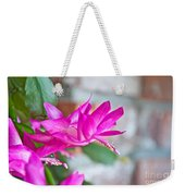 Hot Pink Christmas Cactus Flower Art Prints Weekender Tote Bag