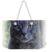 House Cat Stare Weekender Tote Bag