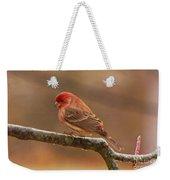 House Finch Weekender Tote Bag
