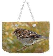 House Sparrow II Weekender Tote Bag