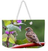 House Sparrow On A Wheel Weekender Tote Bag