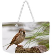 House Sparrow Passer Domesticus On The Perch Weekender Tote Bag