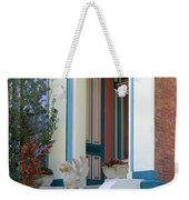 House With Griffin Lafayette Square St Louis Weekender Tote Bag