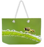 Hoverfly In Dew Weekender Tote Bag