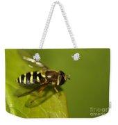 Hoverfly On A Leaf Weekender Tote Bag
