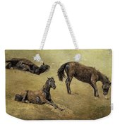 How A Black Horse Turns Brown - Pryor Mustangs Weekender Tote Bag