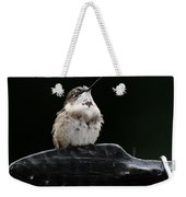 Hummer In The Rain II Weekender Tote Bag