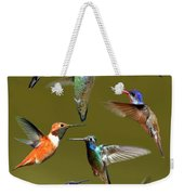 Hummingbird Collage Weekender Tote Bag