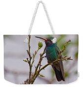 Hummingbird II Weekender Tote Bag