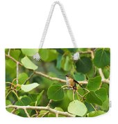 Hummingbird In Tree Weekender Tote Bag