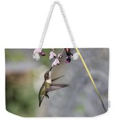 Hummingbird - Little Sipper Weekender Tote Bag